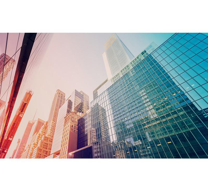 Quản lý và Kinh doanh </br> Bất động sản